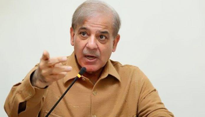 شہباز شریف صدر ن لیگ